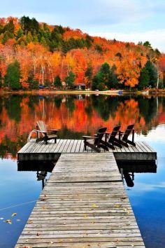 Canada-Fall Leaves