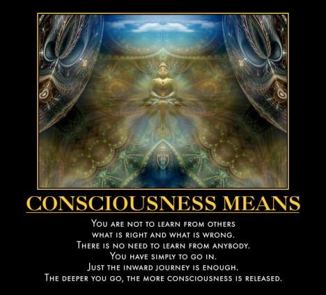 Consciousness Means