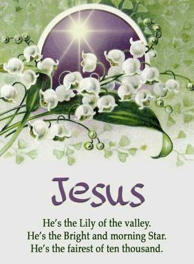 Lily of the Valley - Yeshua