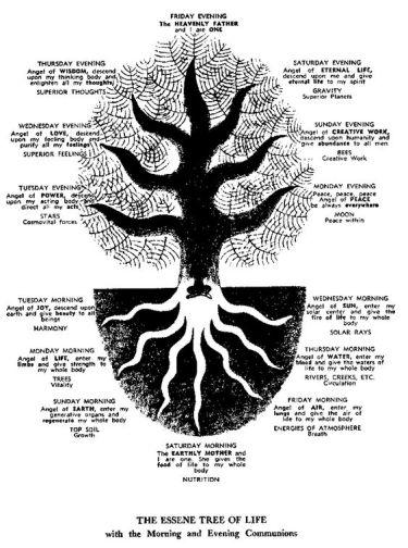 Tree of Life - Yeshua & Essenes