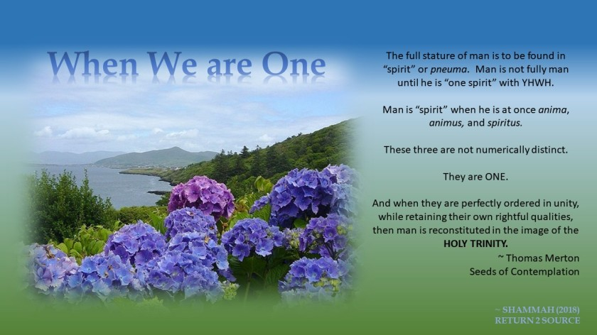 When Man is One - Thomas Merton