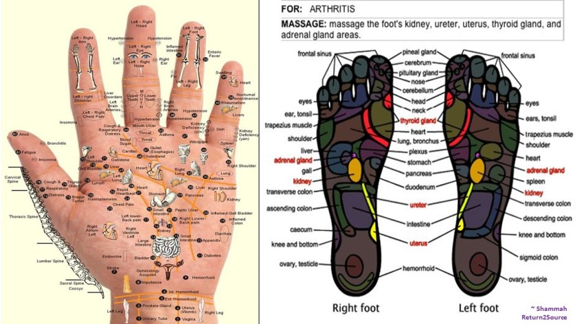 Hand-Feet Pressure Points 4 Body - Mar 2018