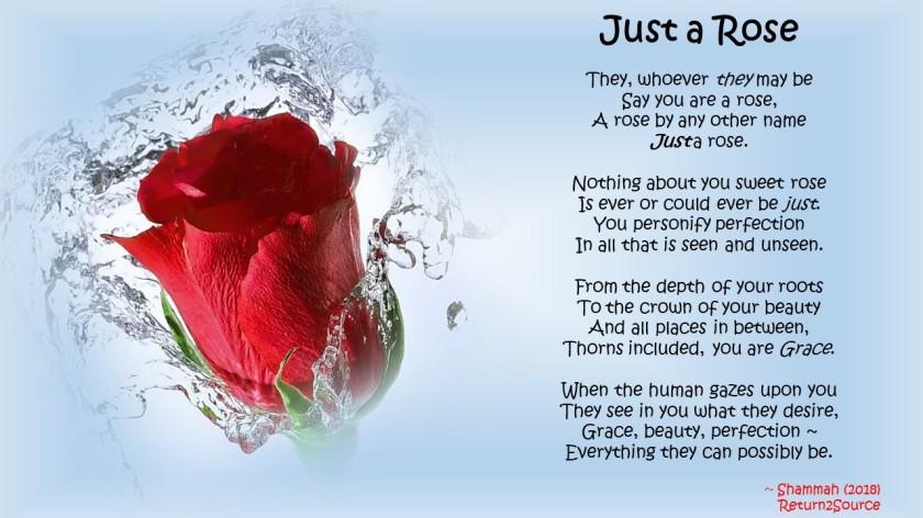 Rose&Quote Mar 18-18