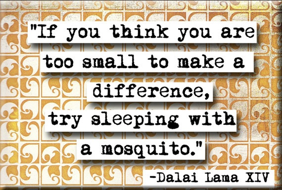 Dalai Lama Quote re Too Small